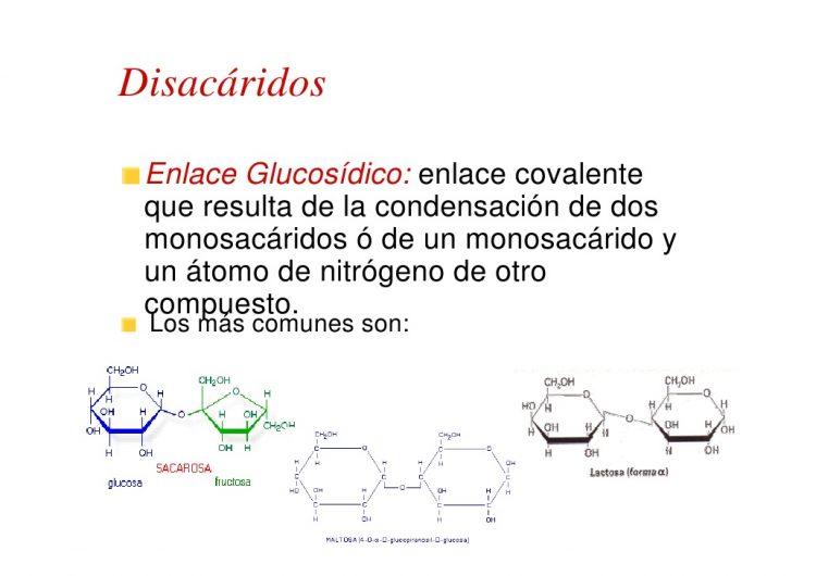carbohidratos glucosa